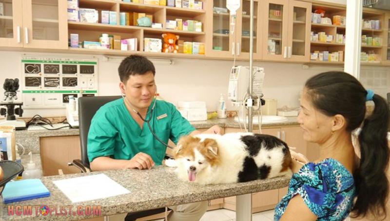 new-pet-hospital-hcmtoplist