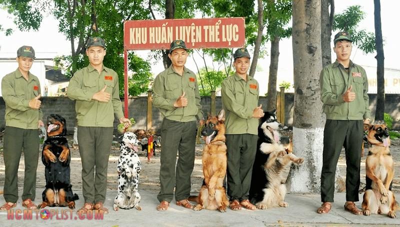 trung-tam-huan-luyen-cho-nghiep-vu-quan-khuyen-hcmtoplist
